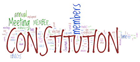 constitution_wordle.png